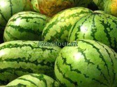 В Астрахани прошел фестиваль арбуза