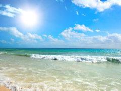 Пригодные и непригодные пляжи Апшерона в этом году