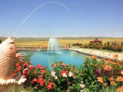 Впервые в Баку открылась зона пикника