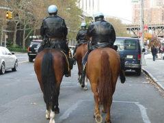 В Азербайджане будет создана туристическая полиция